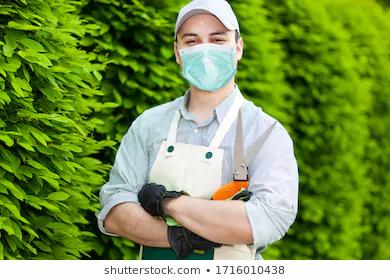Gardening will keep you well during the coronavirus pandemic !