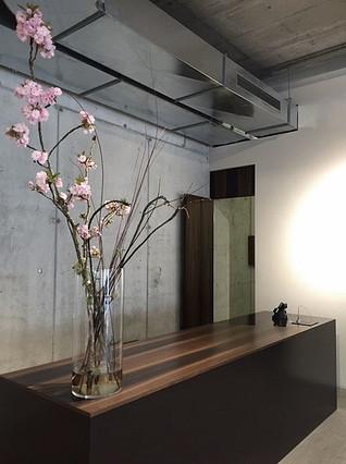 nachtstudio / Suzanne Faltenbacher Architekt -studioacht