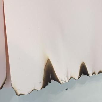 Paper Art Installation - Suzannne Faltenbacher