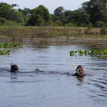Snorkeling during the wet season