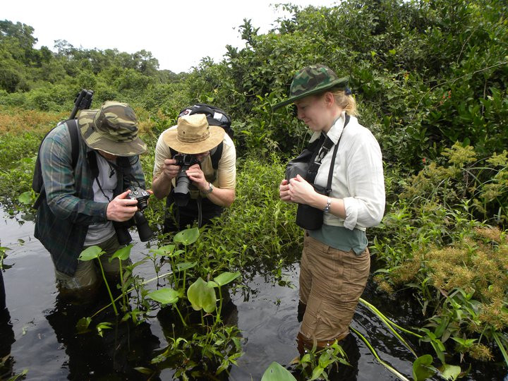 Pantanal Jaguar Camp wetseason