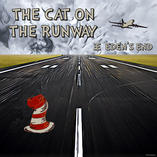 The Cat On The Runway