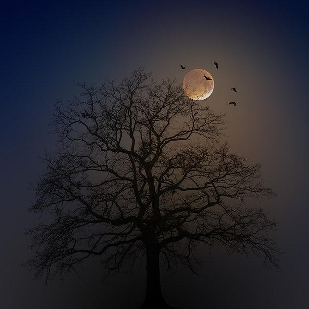 halloween-4582988_1920.jpg