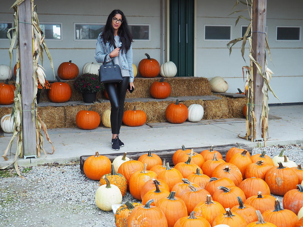 woman at pumpkin patch wearing jean jacket, leather pants and nike runners and kate spade bag