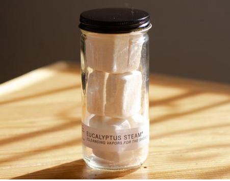 Eucalyptus Steam® Jar by No Tox Life