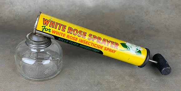 WHITE ROSE -Canada