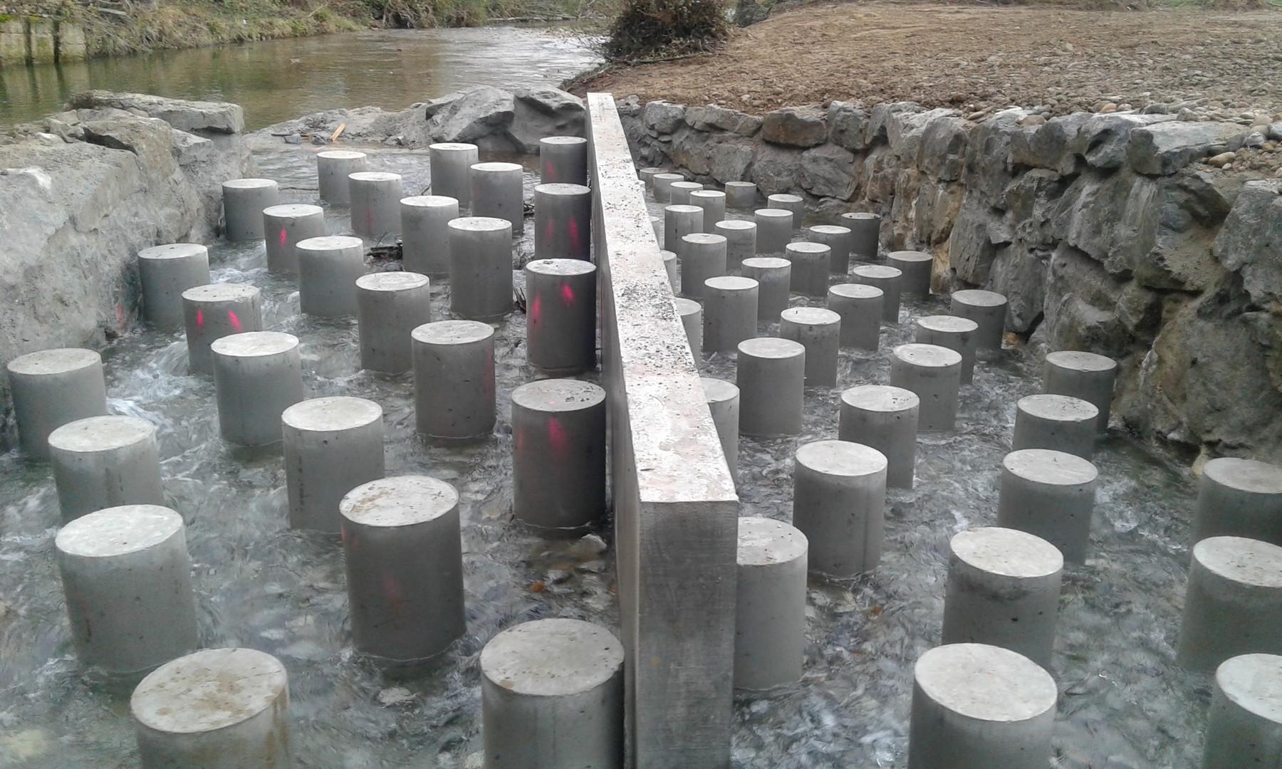Création d'une passe à poissons à Auberives sur Varèze