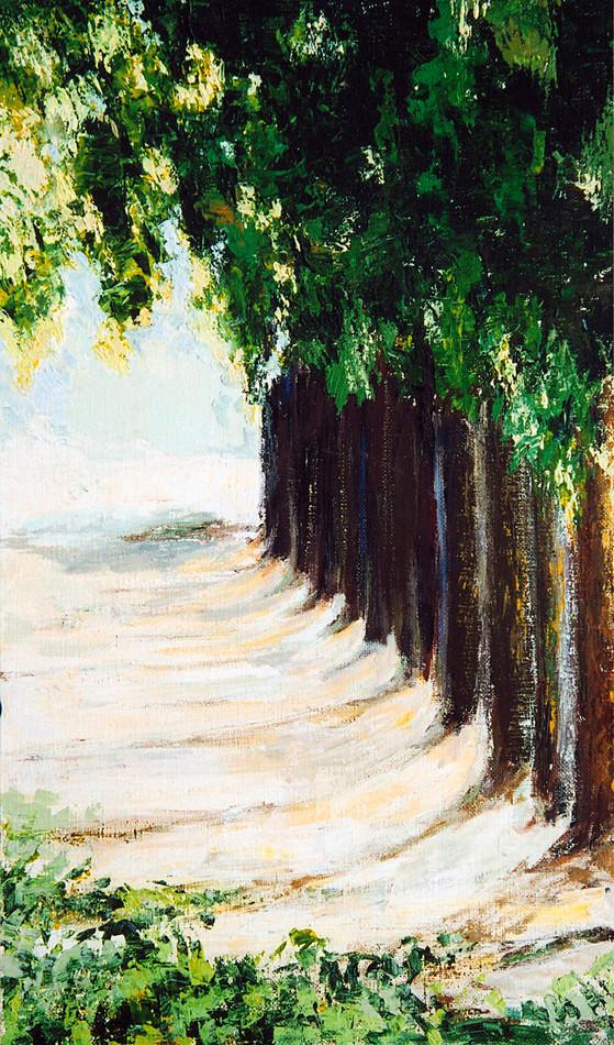 Alley_2003_100x60.jpg
