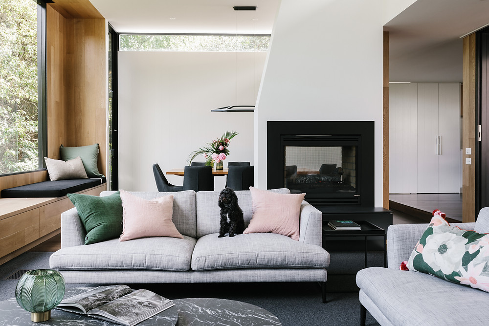 Cosy living room with black labradoodle on sofa