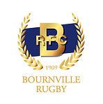BRFC Logo 2018 white RGB.jpg