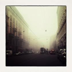 20x20 0001 Foggy morning