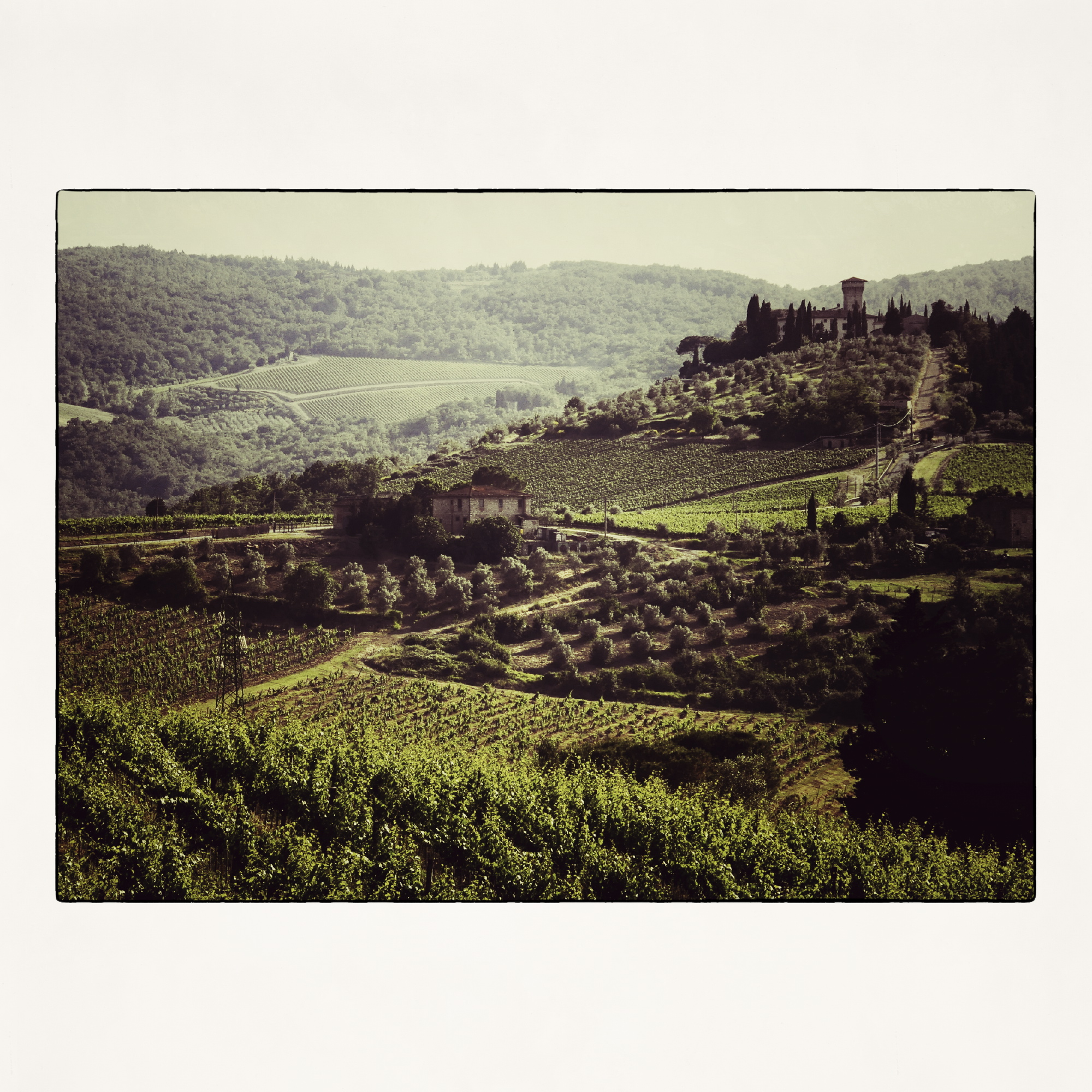 20x20 Tuscan Winery