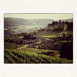 20x20 Tuscan Winery
