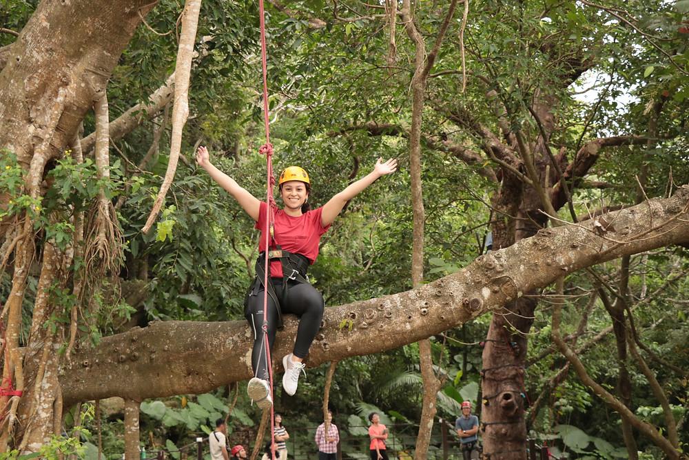 Climbing a tree with Taiwan's Bunun tribe at 高山森林基地