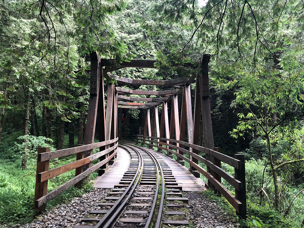 Antique Wooden Trestle 仿古木棧橋 in the Alishan Forest Recreation Area