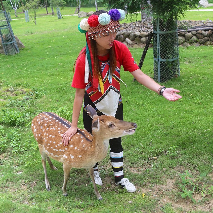 Laiji tribe member petting a deer at the Yokeoasu Market