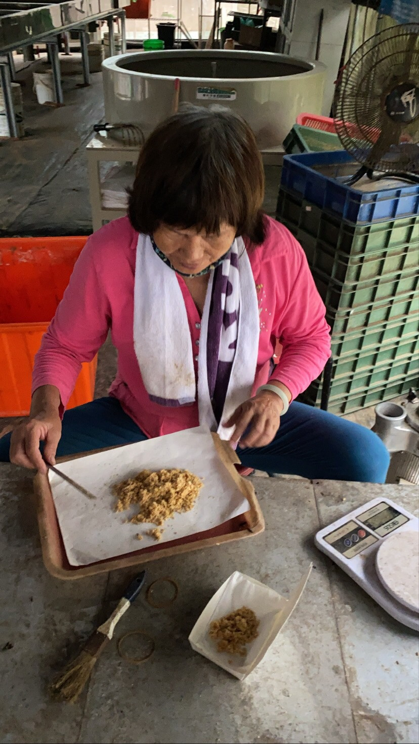 A worker at Chiayi's YMCC Ecological Farm weighs black soldier fly larvae to sell