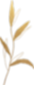 gold_leaf_04.png