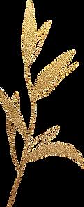 gold_leaf_04.png
