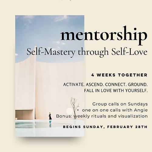 Mentorship SMSL.png
