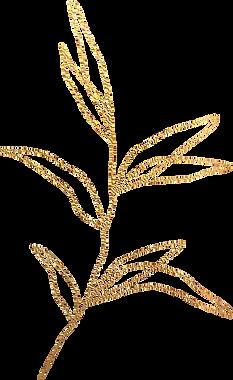 gold_leaf_02.png