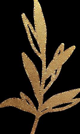 gold_leaf_03.png