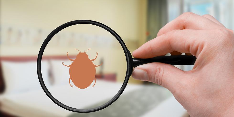 Bedbugs 101
