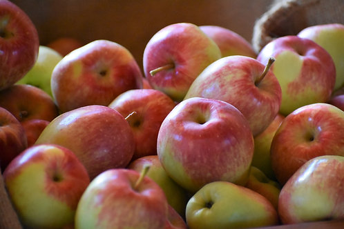 * National apple, medium