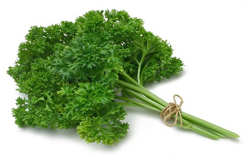 Curly-leaf parsley