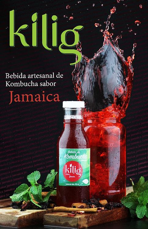 Kombucha jamaica