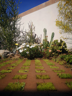 Jardín Misión San Adrián