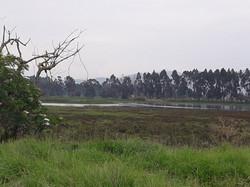 Territorio Jaboque