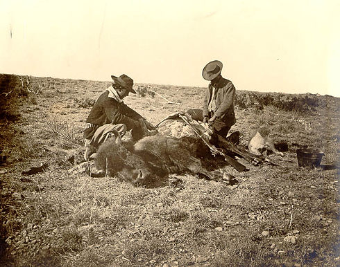 Taylor County Buffalo Hunt 1874 William