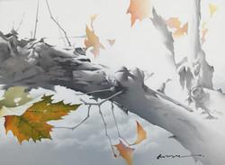 19_oil_on_canvas_45.5×33.4cm.jpg