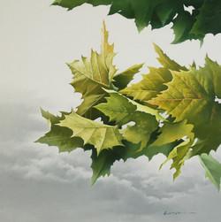 46_oil_on_canvas_72.7×72.7cm.jpg