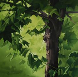 24_oil_on_canvas_72.7×72.7cm.jpg