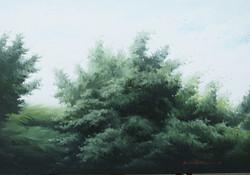 12_oil_on_canvas_72.7×50.5cm.jpg