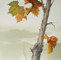 47_oil_on_canvas_72.7×72.7cm.jpg