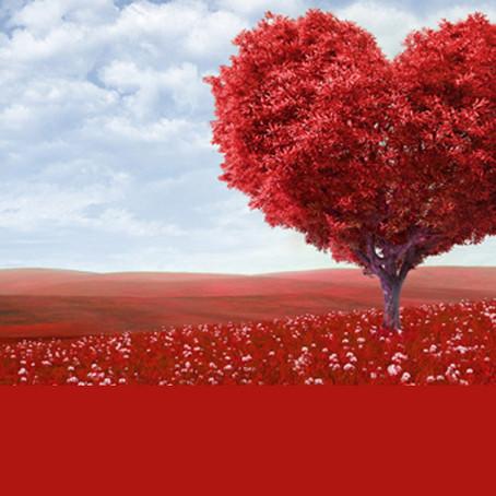 Día de Los Enamorados en distintos lugares del Mundo