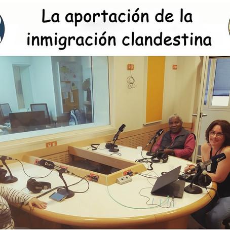 La inmigración clandestina y su aporte socio-cultural