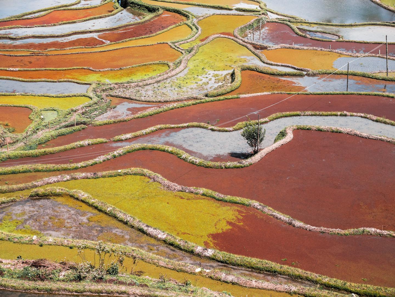 Yuanyang, Yunnan, China, 2018.