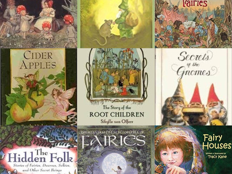 Fairy Picture Book Companions