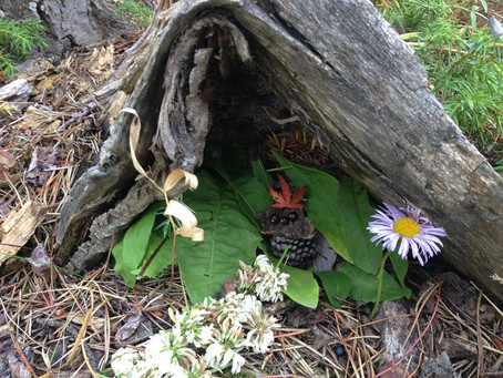 Fairy and Gnome Collaboration: Learning through Play