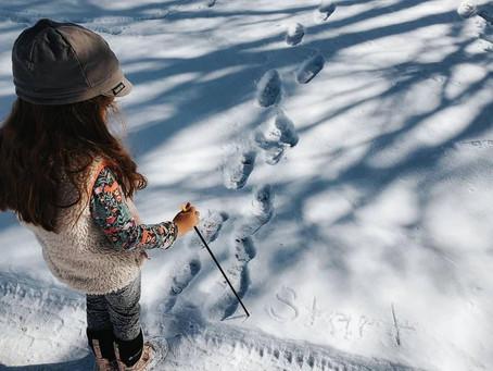 Snow Maze Fun by Joey Hodlmair