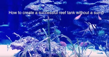 How to Setup a Reef Aquarium without a Sump - A Sumpless Coral Reef Aquarium