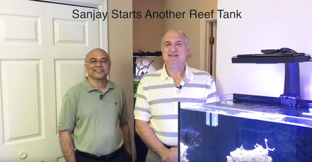 SanJay is setting up a new coral reef aquarium - starting the saltwater aquarium