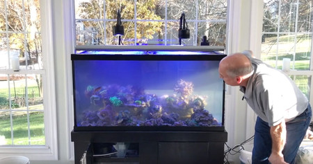 How to perform a tank swap - The Paletta Sun-Lit Tank - americanreef reefkeeping videos