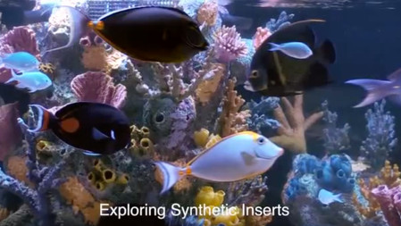 Can't Grow Coral - try Synthetic Inserts
