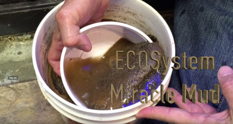 Mike Paletta on ECOsystem Miracle Mud