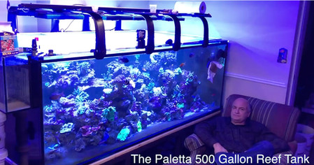 Part II - Paletta 500 Gallon Reef Tank Build Out - moving from a smaller reef tank to the ultimate
